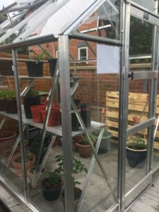 Photo of greenhouse and plants